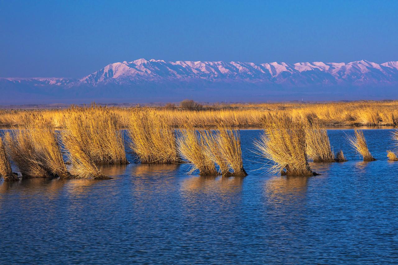 新疆最大的咸水湖 艾比湖