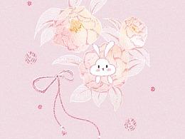 粉白山茶花  --Cloud Rabbit--手机壁纸