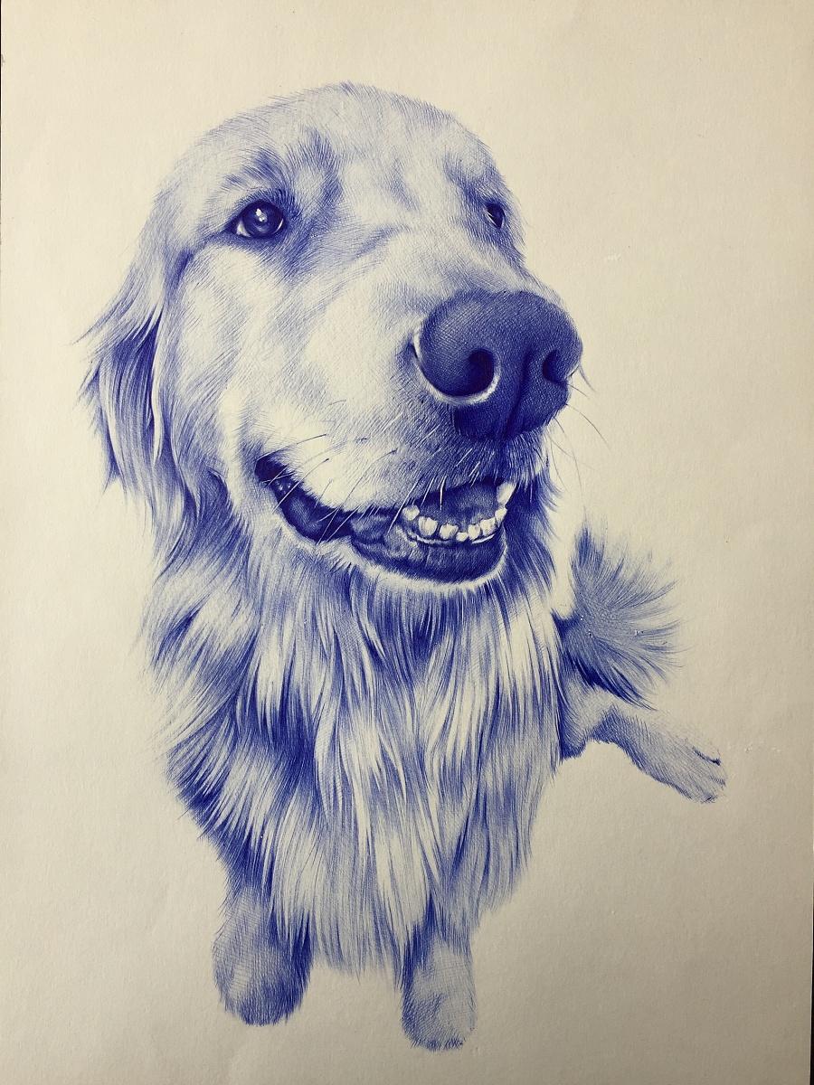 圆珠笔画狗