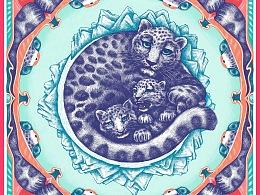 雪豹-怀抱