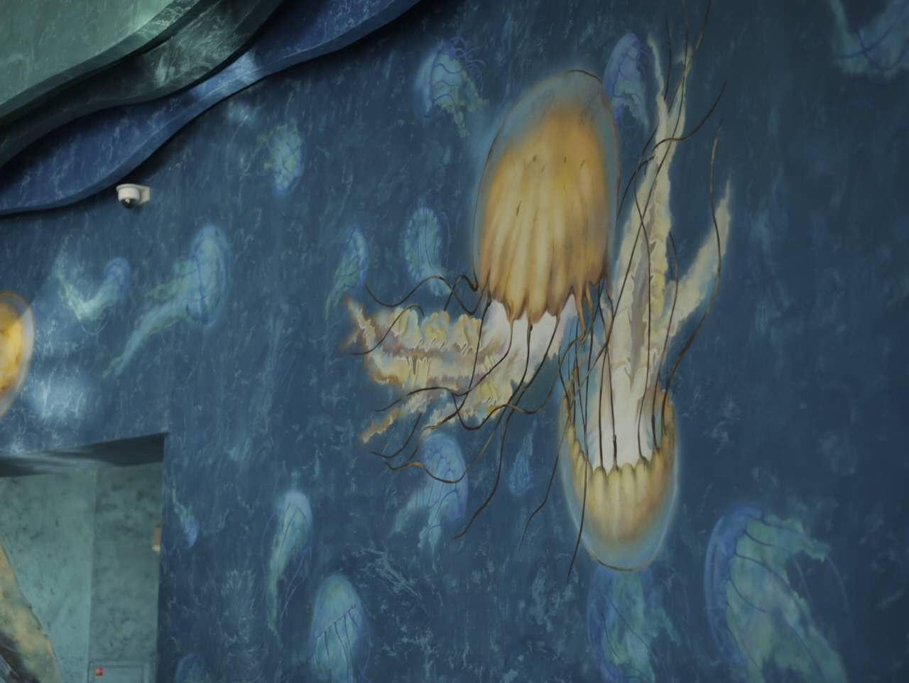 海底世界墙体彩绘|其他|墙绘/立体画|广州3d立体画