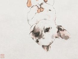 狗狗系列作品
