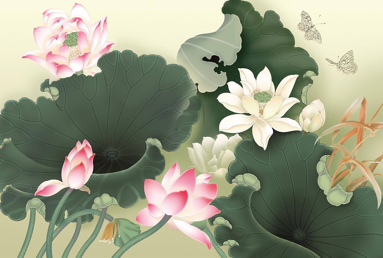 手绘国画 花卉