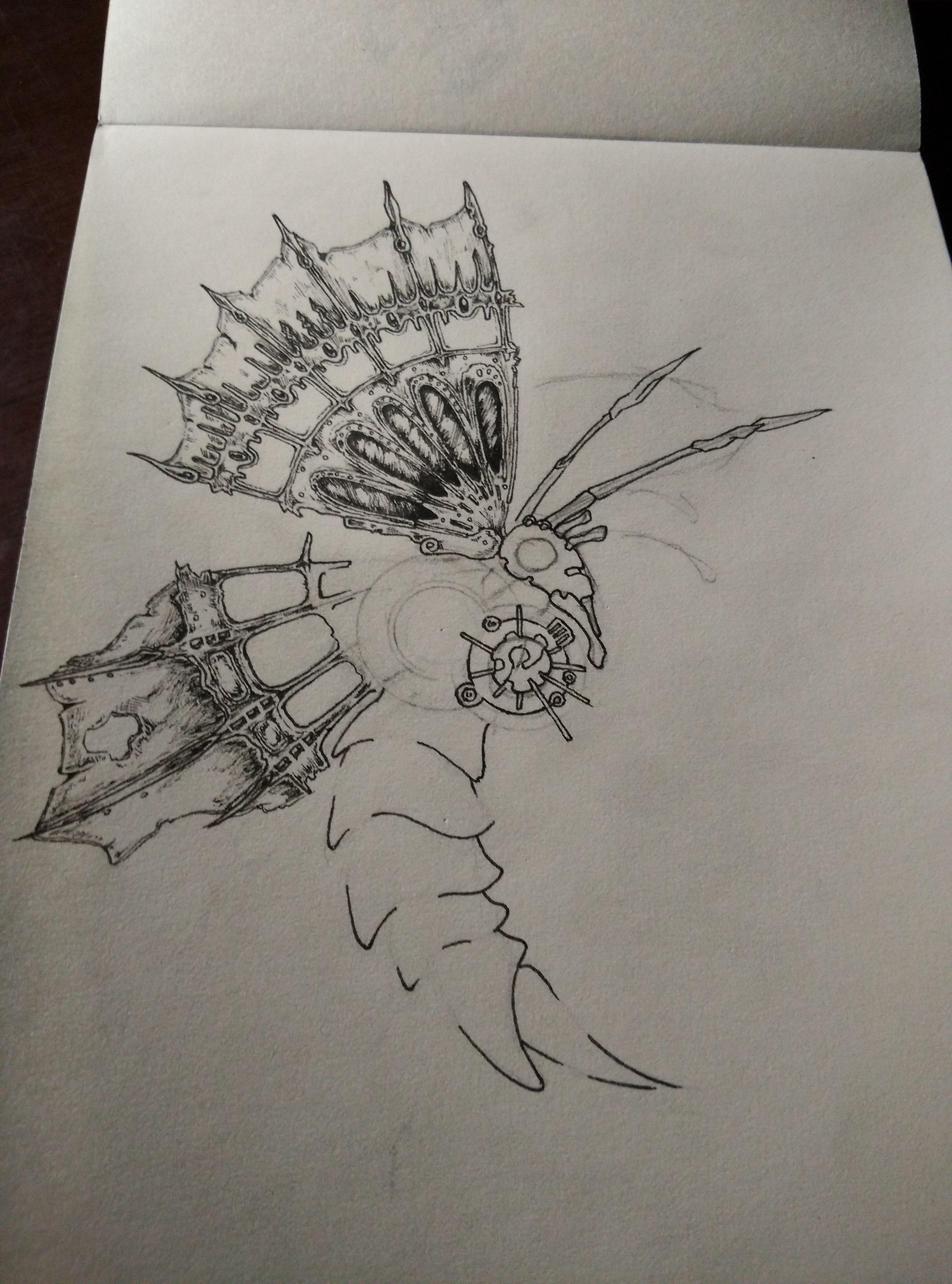 蝴蝶 黑白装饰画图片