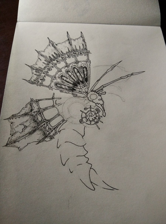 蝴蝶 黑白装饰画|概念设定|插画|黑暗星匙