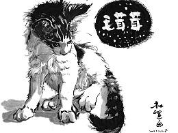 1958  毛茸茸