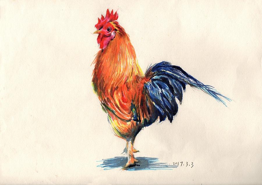 签字笔画简笔动物