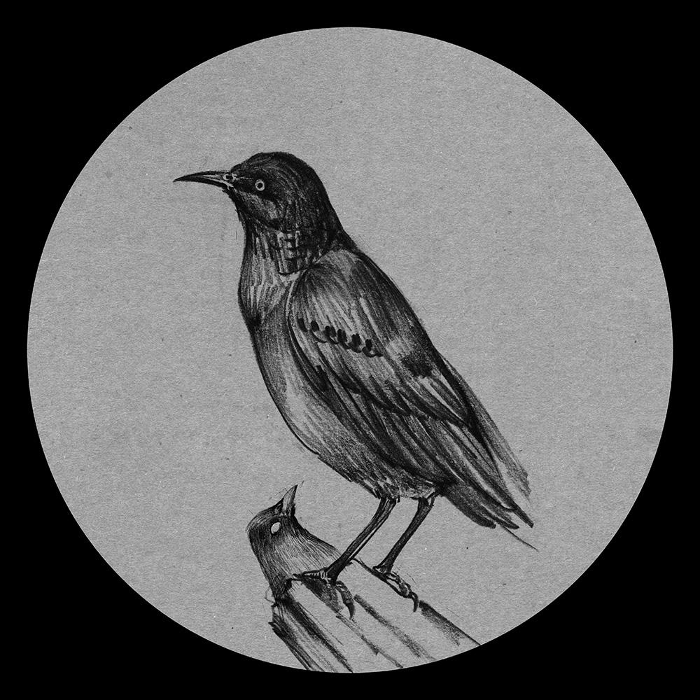 手绘系列—暗黑