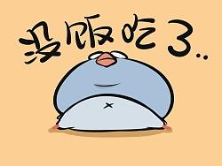 鸽鸽BOLU动画表情