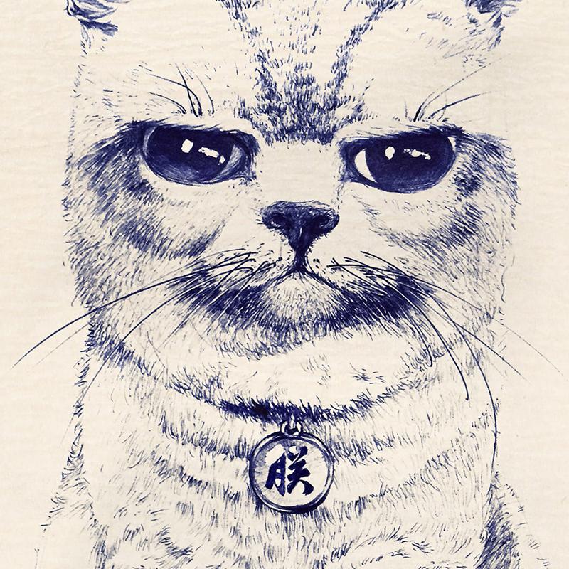 圆珠笔画猫科动物|其他绘画|插画|biubiu已经被注册-圆珠笔画,蓝玫瑰