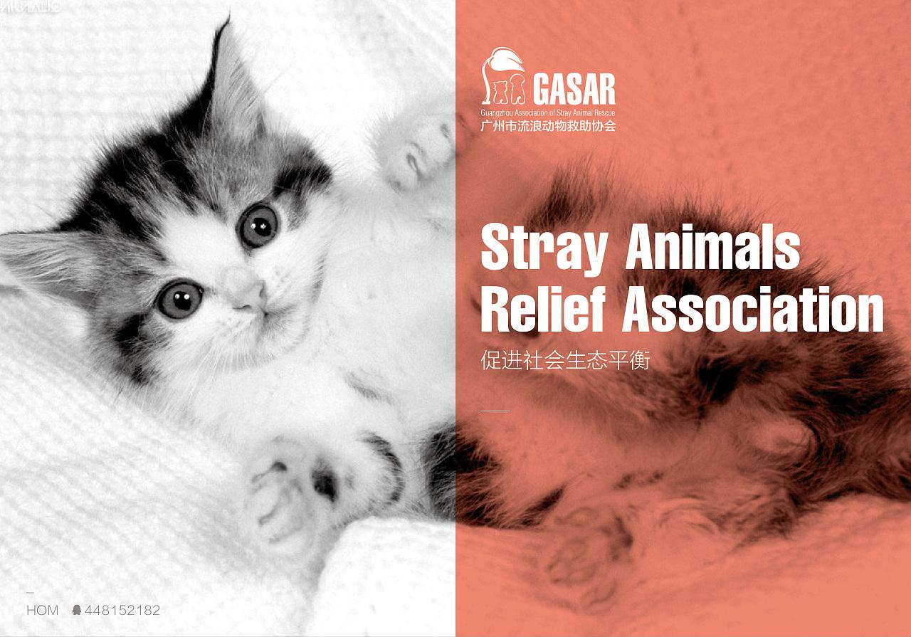 流浪动物救助协会