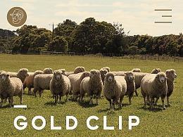 GOLD CLIP首页设计 (羊毛被 澳洲 被子  床品 )