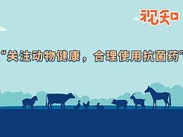 联合国粮农组织商业视频