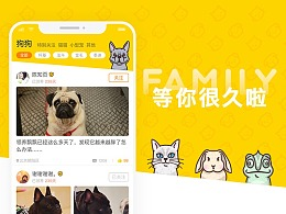 M萌领养宠物 1.0 - 花火圆桌第十期公益项目