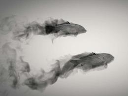 C4D进阶案例—中国水墨鱼动画解析