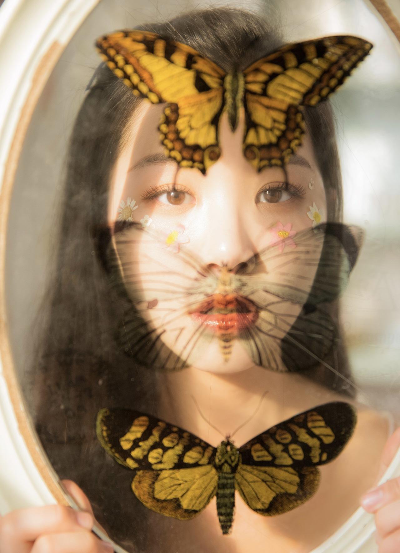 庄生晓梦迷蝴蝶