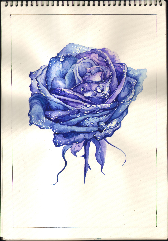 临摹(圆珠笔) 蓝色妖姬