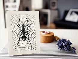 渺小的伟大-蚂蚁