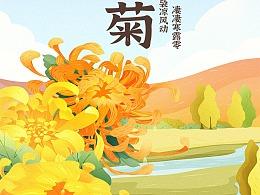 二十四节气·秋菊