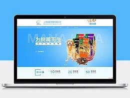 电商店铺装修-上海淳荣贸易有限公司