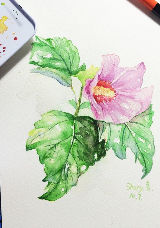 2015年 水彩—植物
