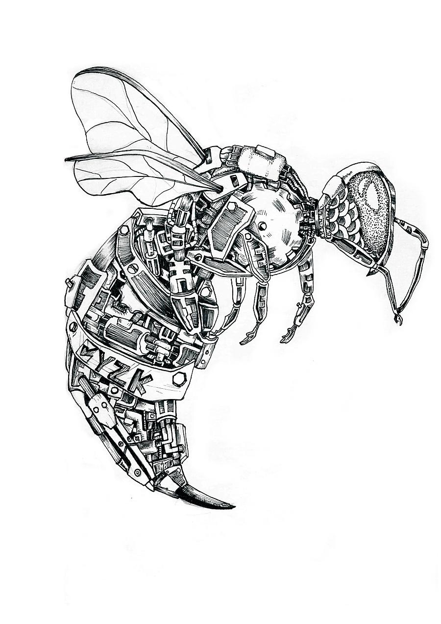 手绘蜜蜂简笔画
