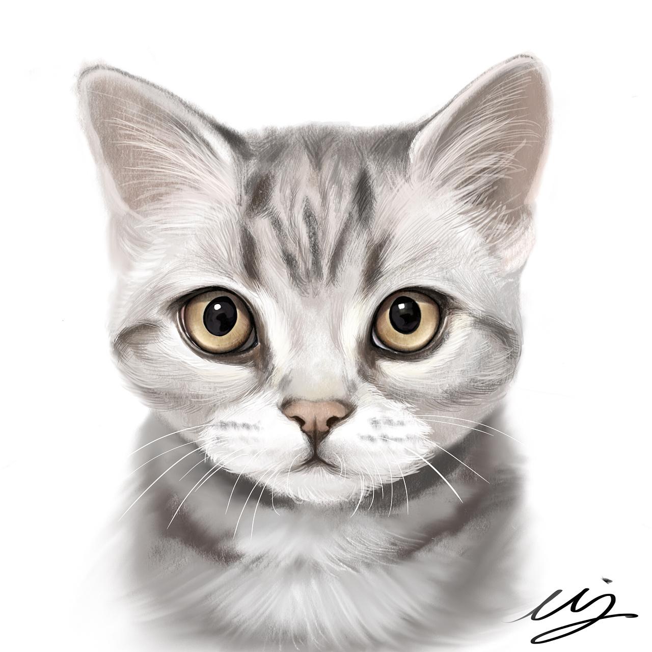 手绘简单猫咪图片