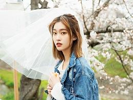 【有映画】Sakura Season