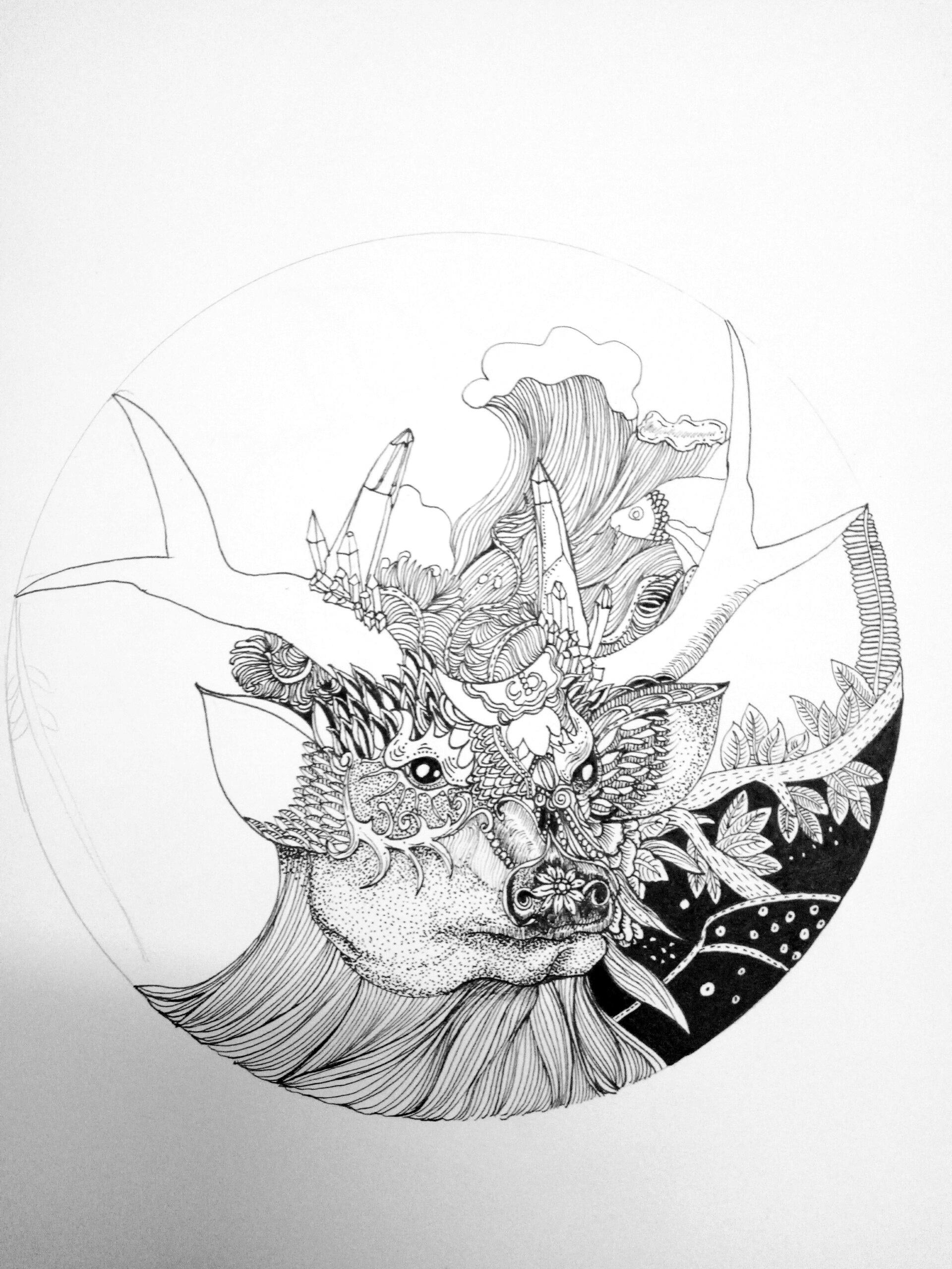 麋鹿插画黑白