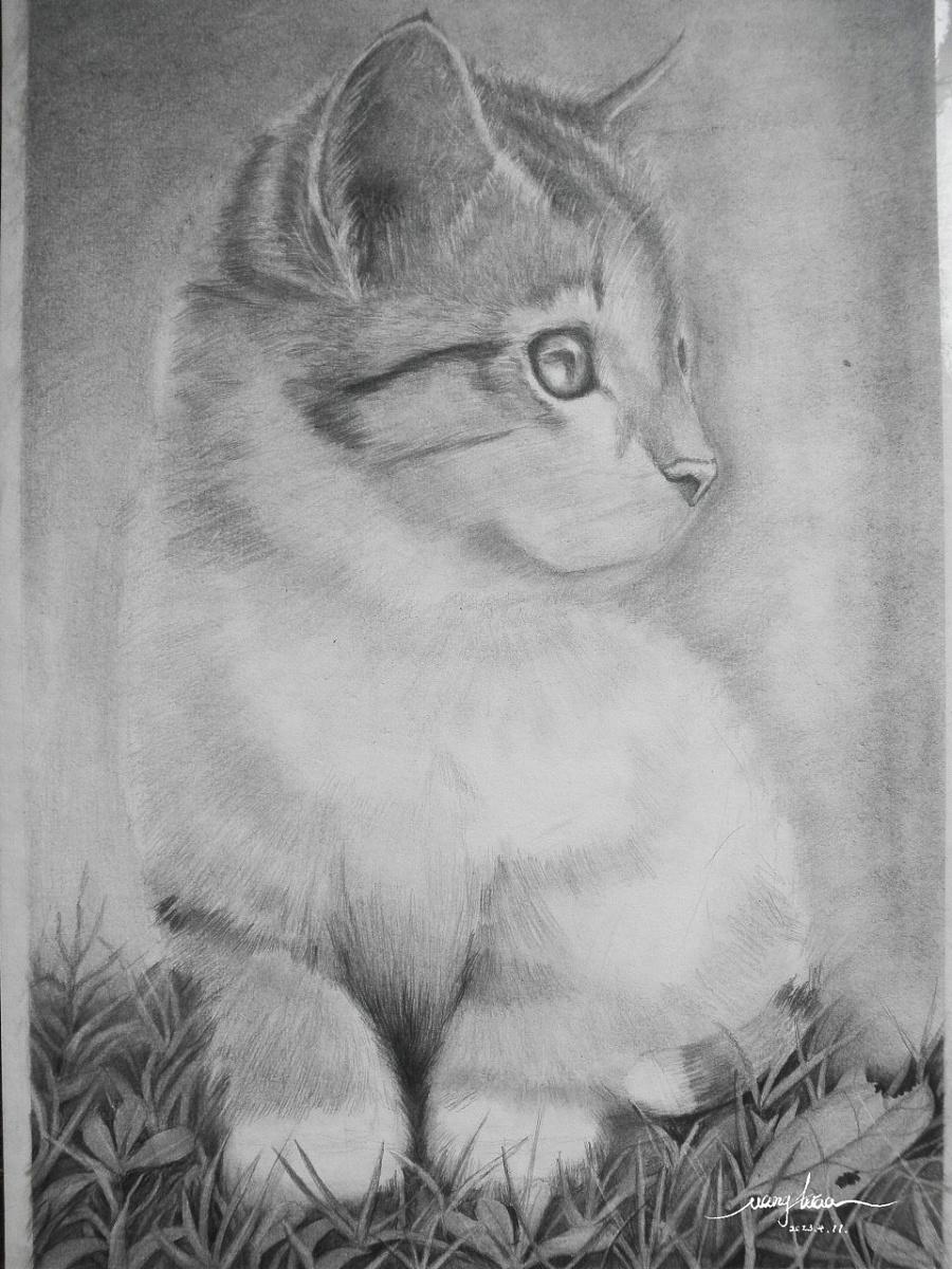 铅笔画《猫咪》|其他绘画|插画|小彪彪