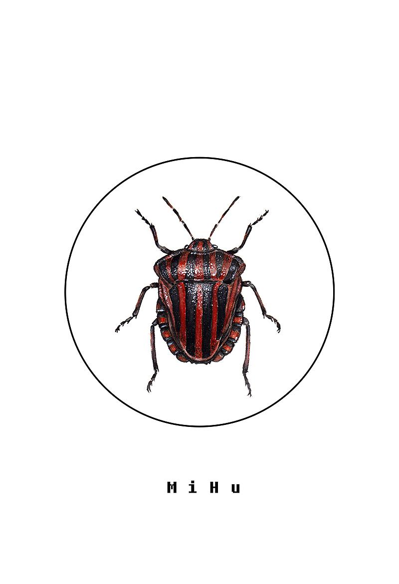 原创作品〈手绘昆虫〉红色系列