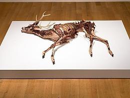 艺术家 | 埃里克斯文森的自然主义雕塑