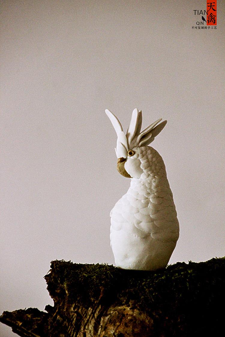 鹦鹉的眼,喙,鼻相当于花蕊,羽毛相当于花瓣,翅膀相当于叶子,尾巴相当