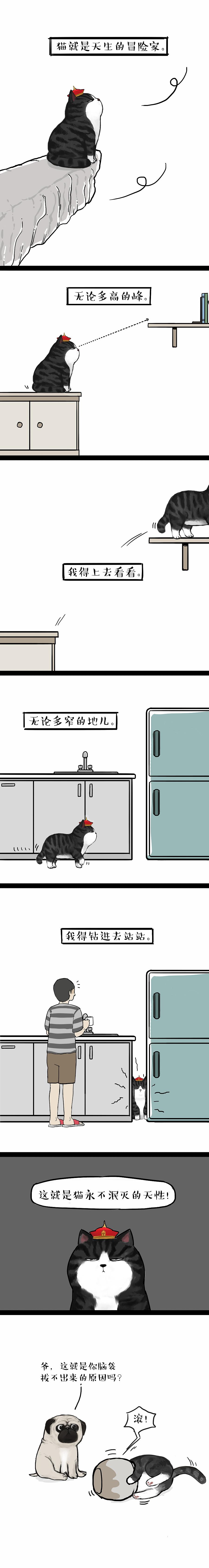 查看《神啊,走点心吧!每只狗都不容易。》原图,原图尺寸:3000x22500