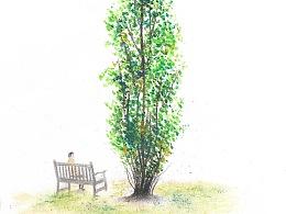 英国皇家植物园写生与绘画