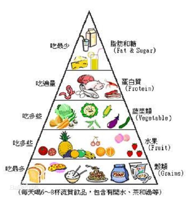 均衡膳食金字塔】
