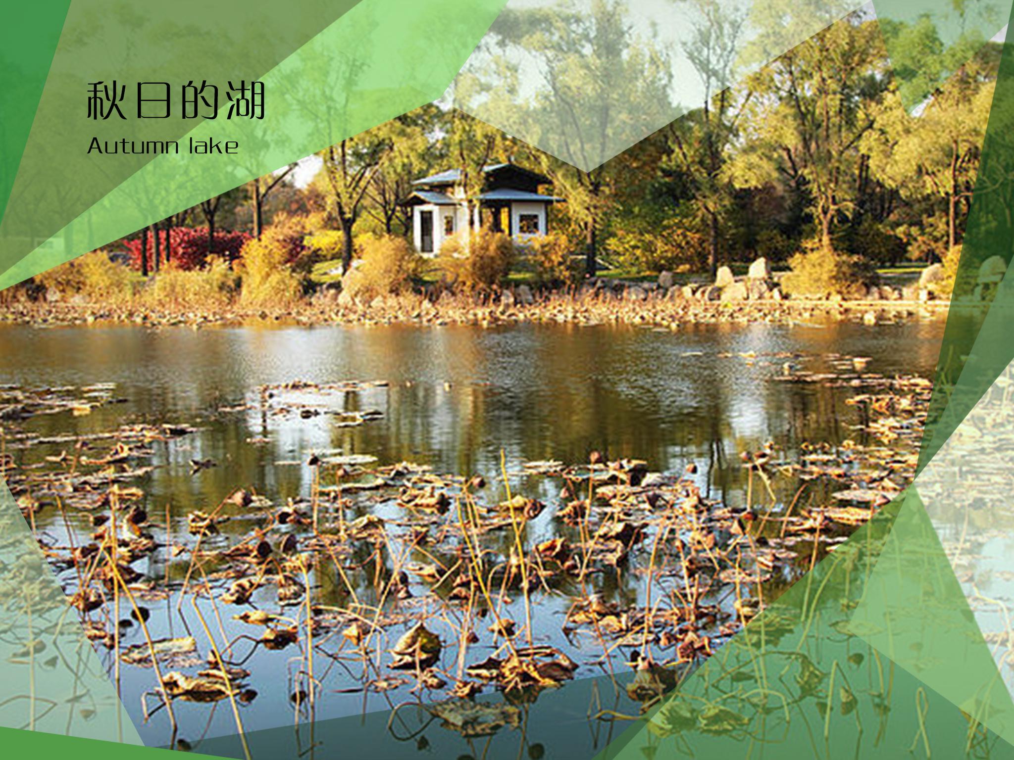 哈尔滨文明城市印象画册