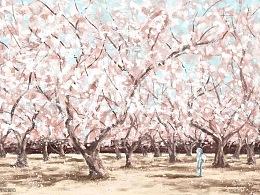 《回忆吐鲁番的杏花》