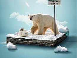 北极熊-小景合成