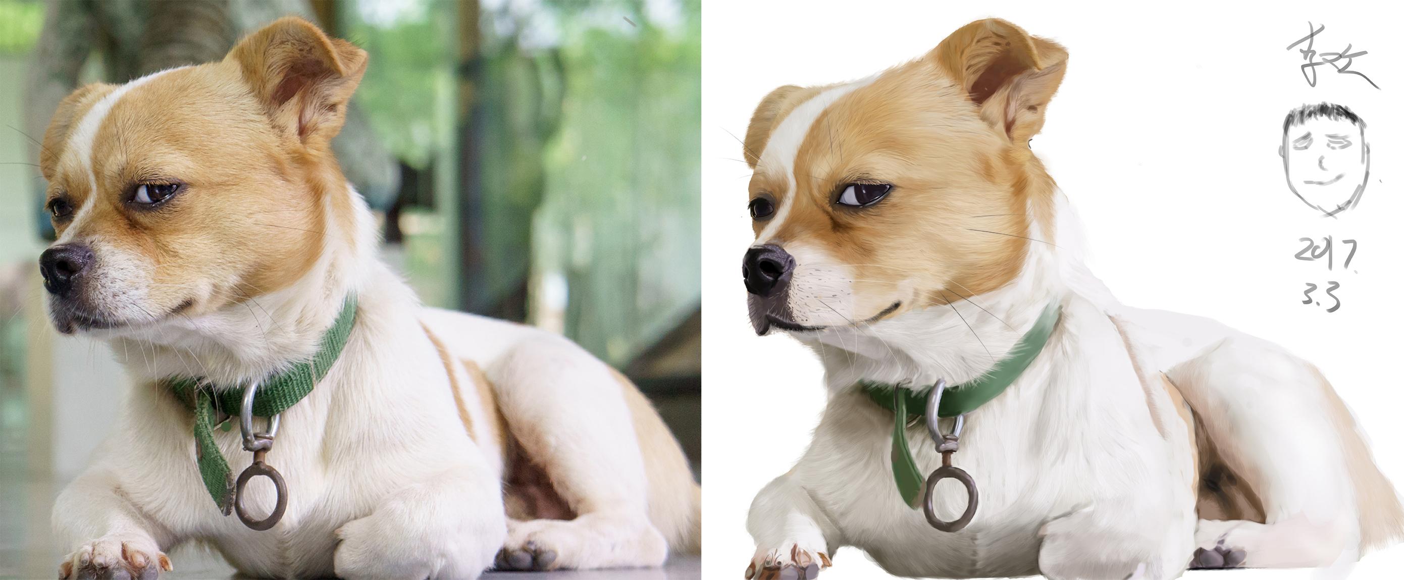手绘学习中的,第一只狗