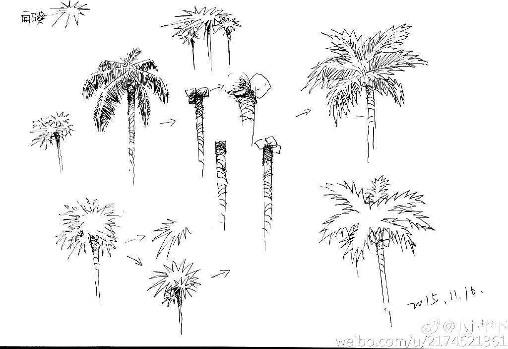 景观园林手绘草图