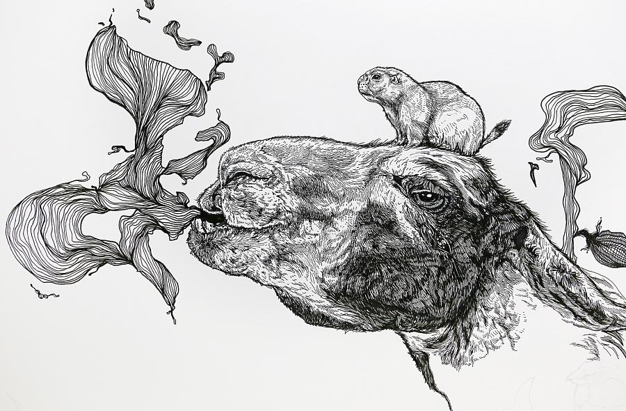 原创作品:手绘动物插画