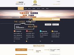 营销类型网站