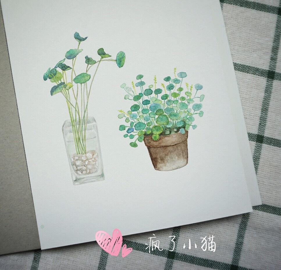 手绘小清新水彩作品,作杂志配图,定制各类插画