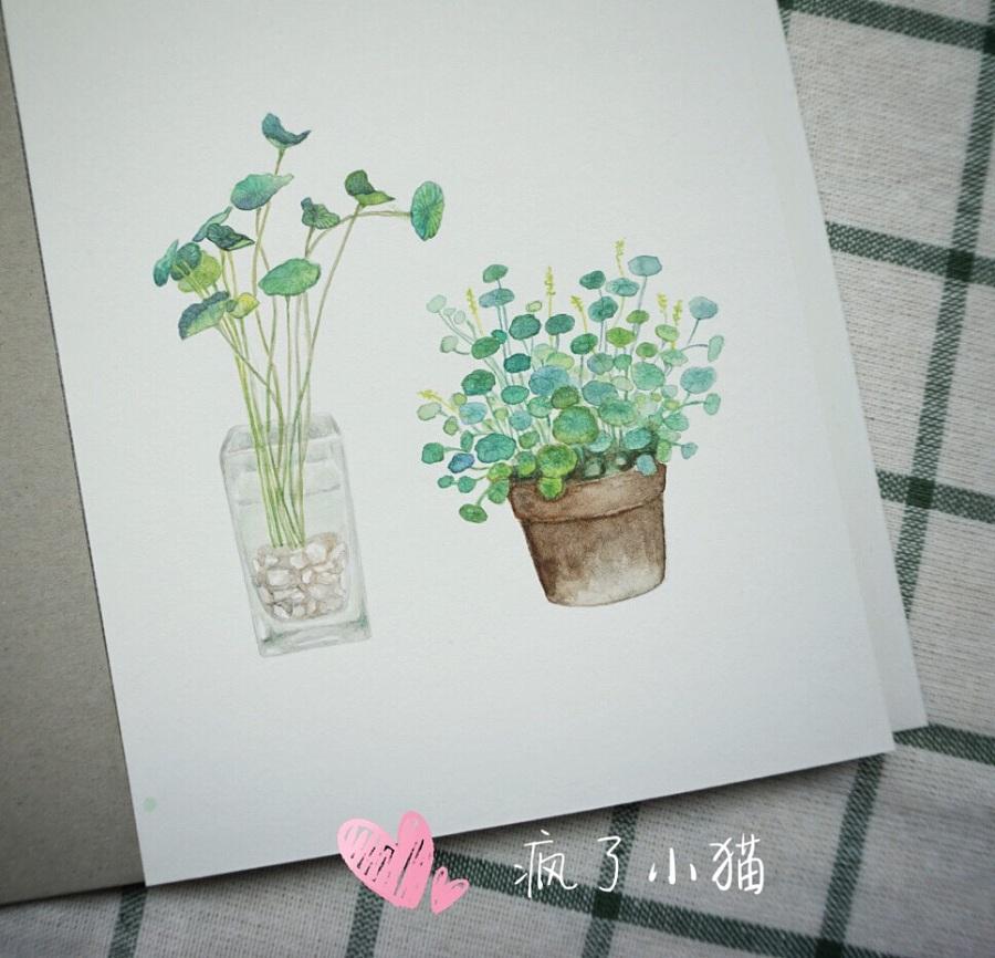手绘小清新水彩作品,作杂志配图