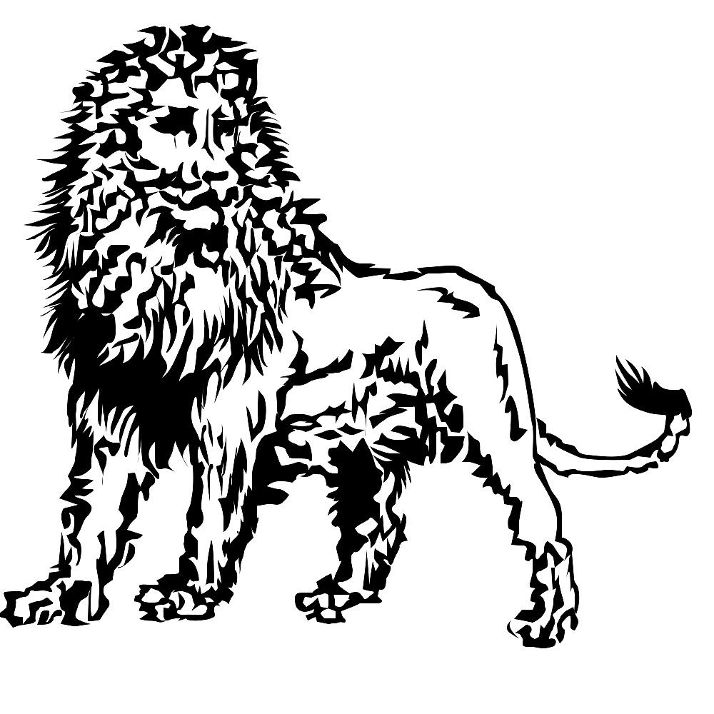 狮子手绘三视图