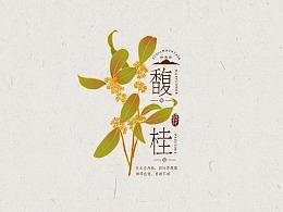 桂花茶/蜜包装设计