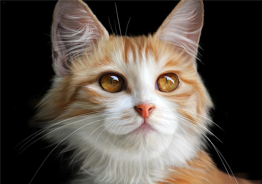 手绘动物世界