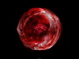 Cell Forerunner | 先兆细胞