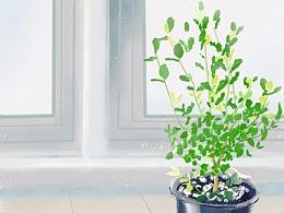 阳台小绿-Sai板绘练习(附过程)